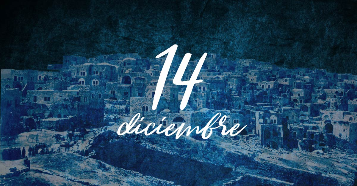 14 diciembre