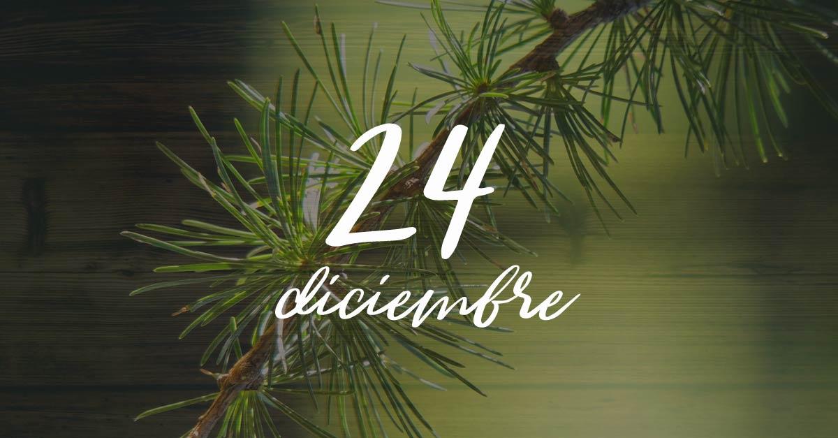 24 diciembre